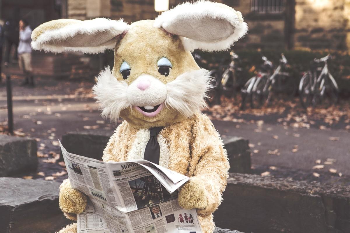 Lesender Hase